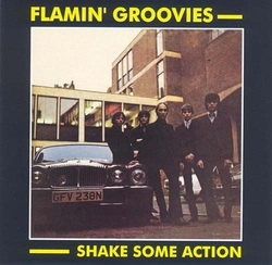 flamin groovies shake some action